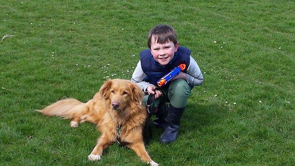 Dog, Child, Kid, Child With Dog, Best Friends, Children