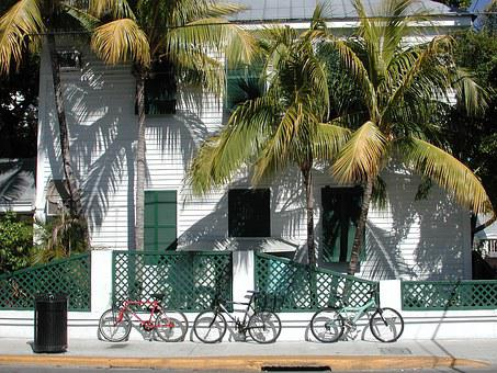 Historic, Key West, Florida, Landscape, Palm Trees