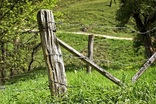Post, Pasture Fence, Fence, Demarcation, Old, Wire
