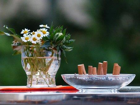 Still Life, Flower Vase, Cigarette Butts, Tilt, Smoking