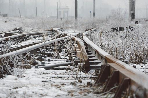 Road, Nature, Winter, Photography, Plants, Railroad