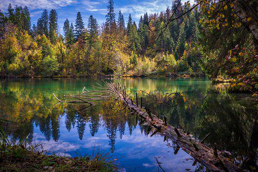 Lake, Autumn, Nature, Landscape, Water, Forest, Sky