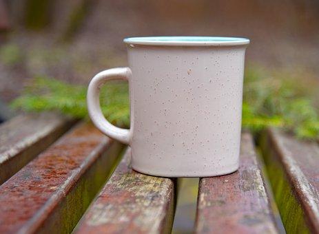 Mug, Park, Vacation, Nature, Mood, In The Fall Of