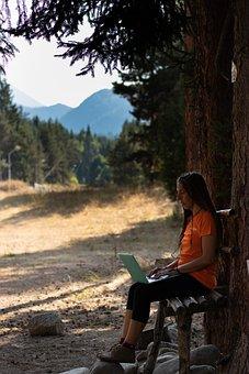 Women, Working, Digital, Startup, Office, Work