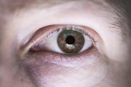 Eye, Eyeball, Eye Ball, Sight, Senses, Eyelid