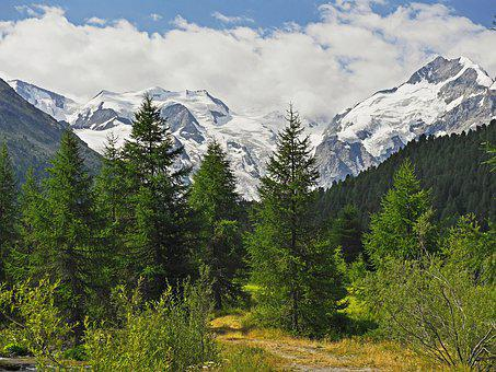 High Valley, Trail, Mountain Hiking, Coniferous Forest