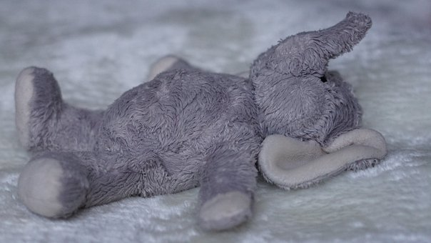 Background, Concerns, Relax, Soft Toy, Stuffed Animal
