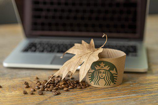Starbucks, Coffee, Laptop, Leaves, Autumn, Hot, Cafe