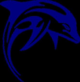 Dolphin, Mammal, Sea Life, Fish, Blue, Marine Creature