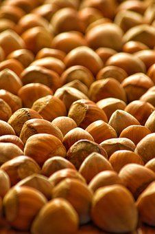 Hazelnuts, Nuts, Food, Nutrition, Delicious, Christmas