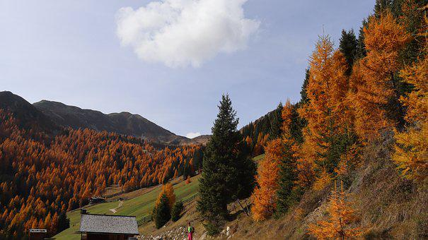 Autumn, Val Casies, South Tirol, Gsiestal, Fall, Colors