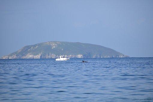 Island, Sea, Ocean, Sky, Dolphin, Fishing, Ons