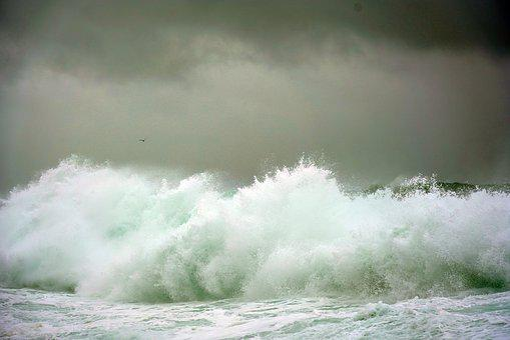 Wave, Sea, Water, Pacific, Ocean, Storm, Coast, Nature