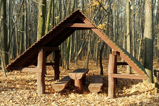 Construction, Wood, Roof, Banks, Table, Forest, Nature