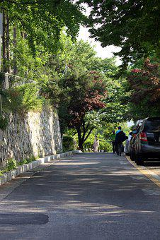 Street, Gil, Green, Road, Wood, Travel, City, Landscape