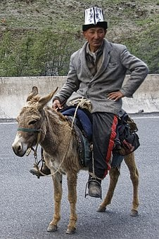 Man, Donkey, Human, Animal, Ride, Culture, Costume, Hat