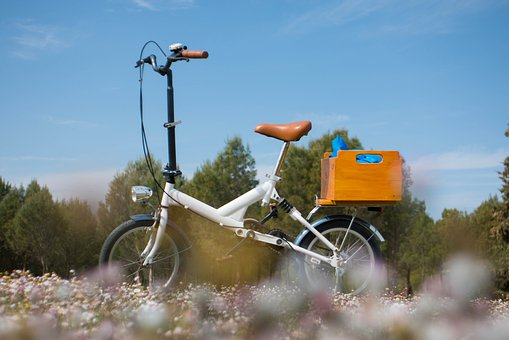 Folding, Bike, Flowers, Bicycle, Nature, Spring, Summer