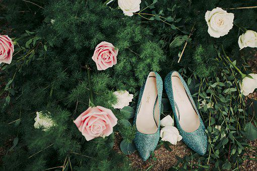 High-heeled Shoes, Quality, Background, Plant