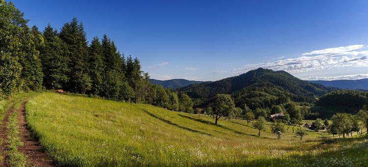 Breitenberg, Panorama, Schwarzwald, Renchtal, Trail