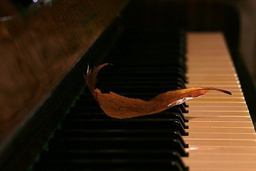 Sheet, Piano, Autumn, Music Of Autumn, Sheet Music