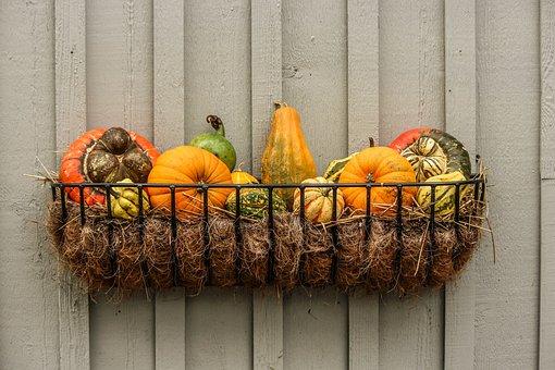 Gourds, Pumpkins, Squash, Autumn Vignette
