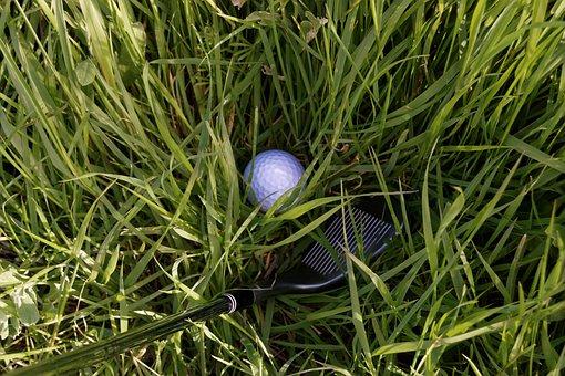 Golf, Club, Iron, Wedge, Rough, Grass, Sport, Course
