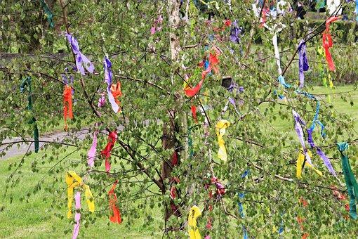 Maypole, Decorated Birch, Tradition, 1, May, Custom