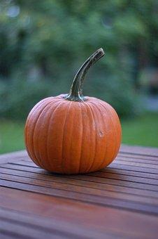 Pumpkin, Autumn, Orange, Halloween, Holiday, Family