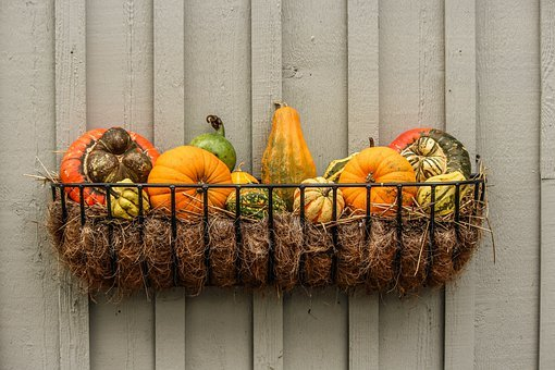 Gourds, Pumpkins, Squash, Autumn Vignette