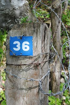 House Number, Number, Digit, Blue, Shield, Thirty-six