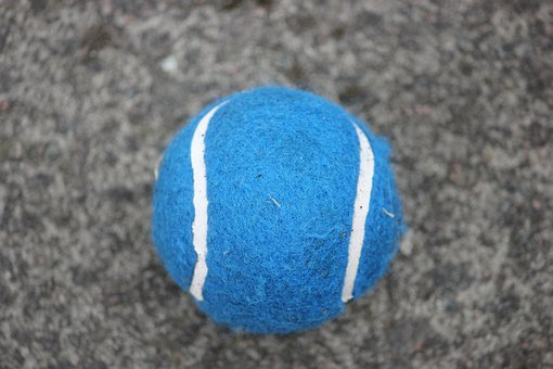 Tennis Ball, Ball, Sport, Game, Competition, Play
