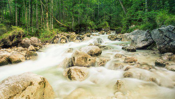 Creek, Forest, Rock, Fluent, Long Time Exposure, Bach
