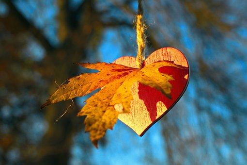 I Love Autumn, Autumn, Leaves, Heart, Love, Romantic