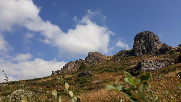 Serbia, Mountain, Nature, Landscape, Europe, Mountains