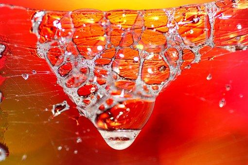 Soap, Bubbles, Cobwebs, Transparent, Colorful, Desktop