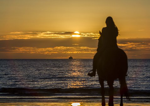 Silhouette, Horse, Ferry, Sunset, Ride, Equine