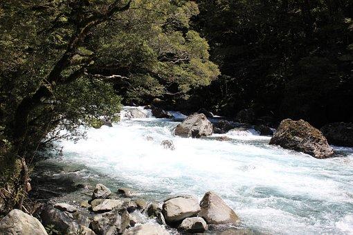 Stream, Water, Rocks, Landscape, Nature, Scenic