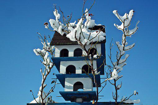 Birdhouse, Winter, Snow, Sky, Nature, Garden, White