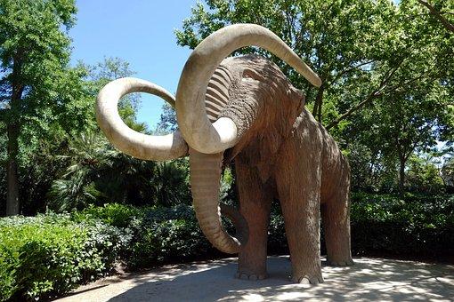 Mammoth, Animal, Prehistoric, Extinct, Paleontology
