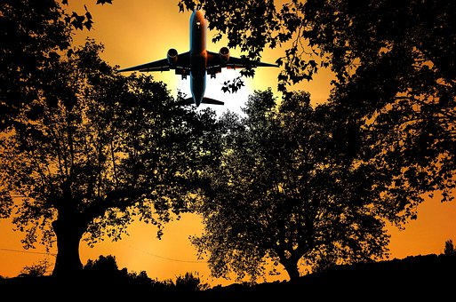 Sunset, Nature, Forest, Silhouette, Aircraft, Sky