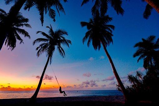 Sunset, Black Pics, Trees Pics