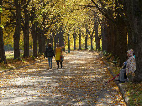 Autumn, Golden Autumn, People, Old Age, Youth, Disabled