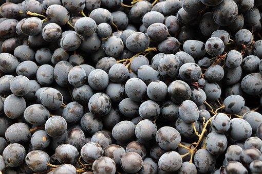 Black Grapes, Fruit, Healthy, Juicy, Vitamins, Sweet