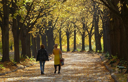 Autumn, Golden Autumn, Colorful, Leaves, October, Mood