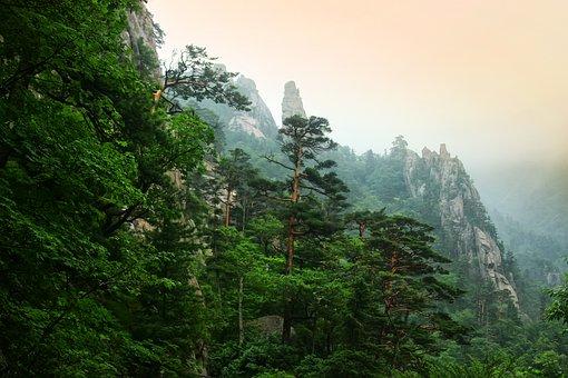 Mt Seoraksan, Dedication Cancer, Travel, Mountain