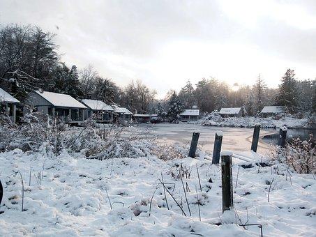 Snow, Bog, Swamp, Tannersville Bog, Birchwood Resort