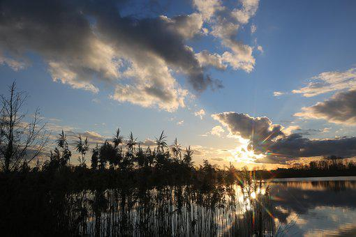 Evening, Water, Reed, Clouds, Rest, Beautiful