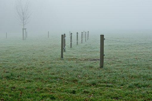 Fog, Foggy, Pasture Fence, Fence Pasture