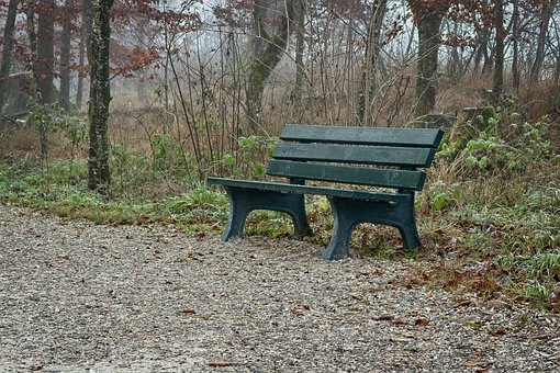 Fog, Foggy, Seat, Bench, Out, Nature, Recovery