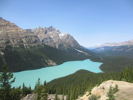 Canada, Peyto Lake, Water, Nature, Mountains